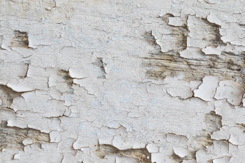 La madera peló el fondo de la textura del color foto de archivo libre de regalías