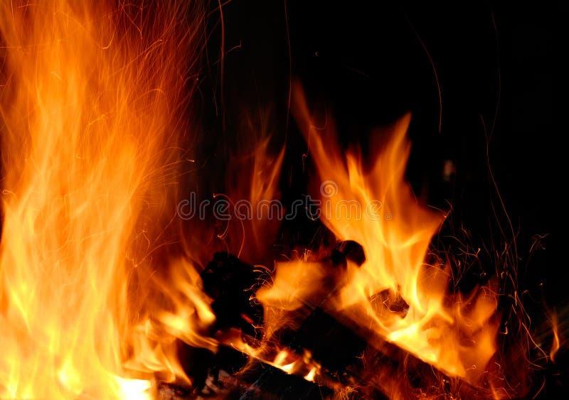 La madera quema en el fuego fotos de archivo libres de regalías