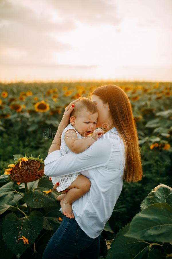 La madre conforta il suo bambino gridante mentre cammina su un giacimento del girasole fotografia stock