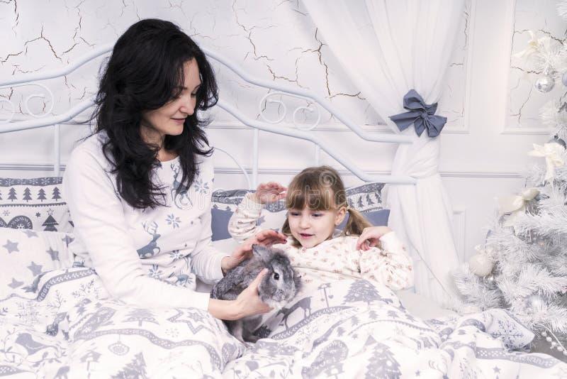 La madre dà la figlia di un coniglio immagine stock libera da diritti