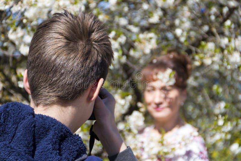 La madre de las fotograf?as del hijo contra la perspectiva de una cereza de p?jaro fotos de archivo libres de regalías