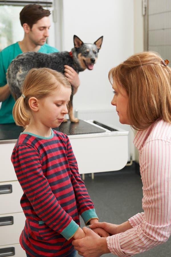 La madre que conforta a la muchacha como veterinario trata el perro enfermo foto de archivo