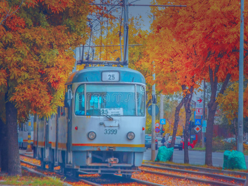 La magie de l'automne à Bucarest sur la ligne 25 de tram photo libre de droits