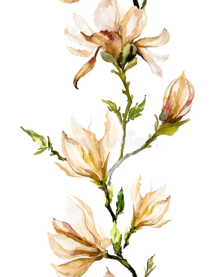 La magnolia beige florece en una ramita en el fondo blanco P inconsútil stock de ilustración