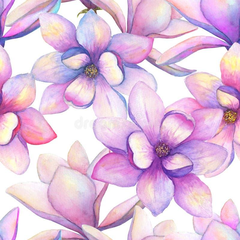 La magnolia hermosa de la acuarela florece el fondo incons?til del modelo Ejemplo bot?nico elegante de la primavera del Watercolo stock de ilustración