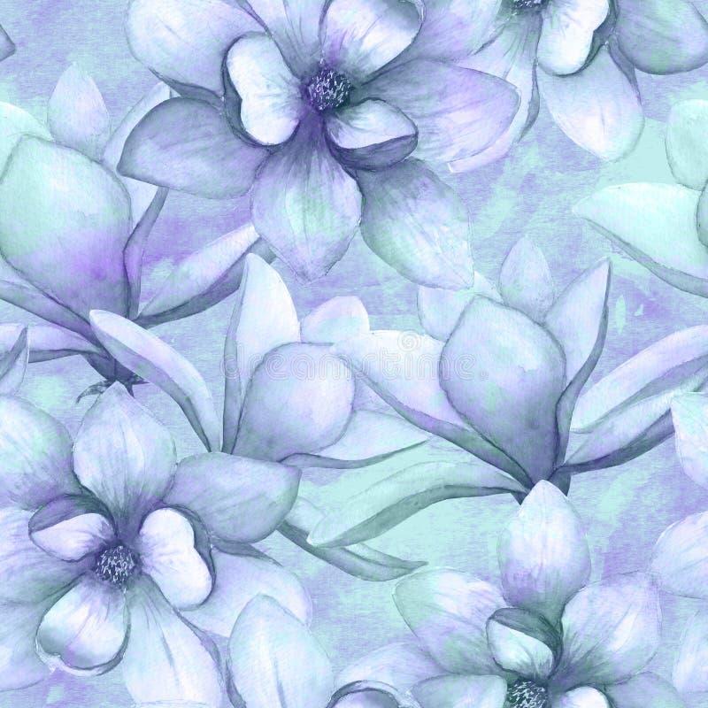 La magnolia hermosa de la acuarela florece el fondo incons?til del modelo Ejemplo bot?nico elegante de la primavera del Watercolo libre illustration