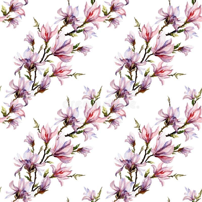 La magnolia rosada florece en una ramita en el fondo blanco Modelo floral inconsútil Arreglo diagonal Pintura de la acuarela stock de ilustración