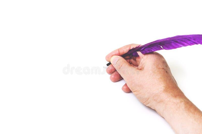 La main écrit, stylo pourpre sur le fond blanc image stock