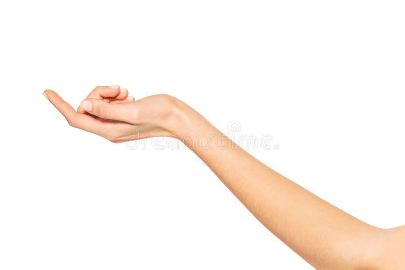La main de la femme vide avec le poignet à l'envers photographie stock libre de droits