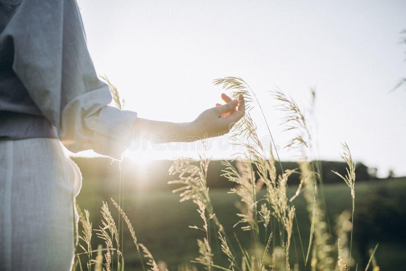La main de la fille touchant les transitoires vertes dans le domaine photo stock