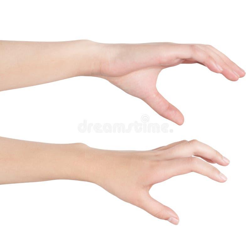 La main de la femme