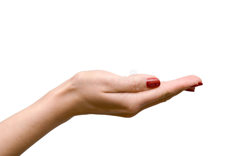La main du femme vide sur le blanc image stock