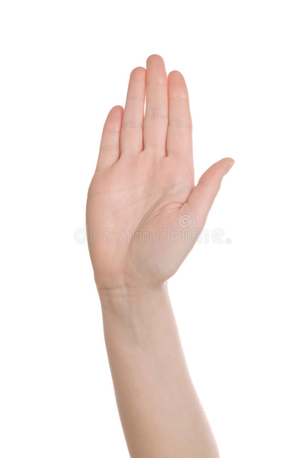 La main faisant l'arrêt se connectent le fond blanc photo libre de droits
