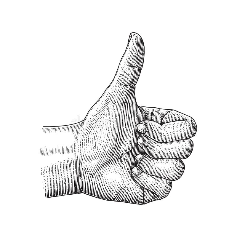 La main humaine aiment dessiner l'illustration de gravure de vintage illustration libre de droits