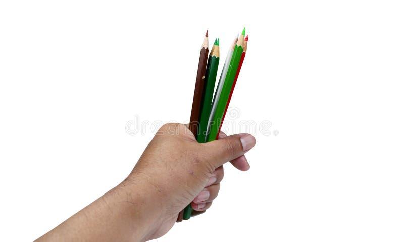 la main tenant la couleur crayonne sur le fond blanc d'isolement photo stock
