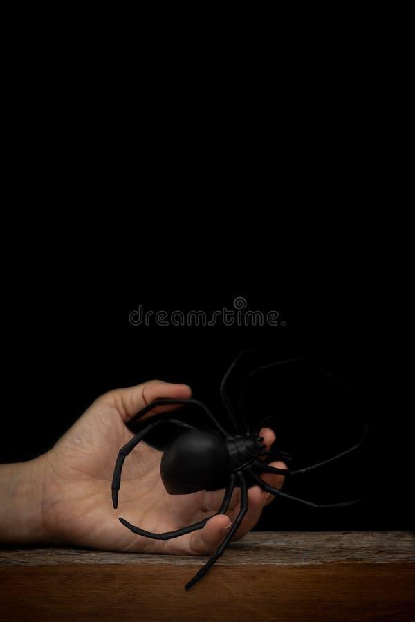 La main tenant le faux jouet en caoutchouc d'araignée sur le fond noir, sanctifient image stock