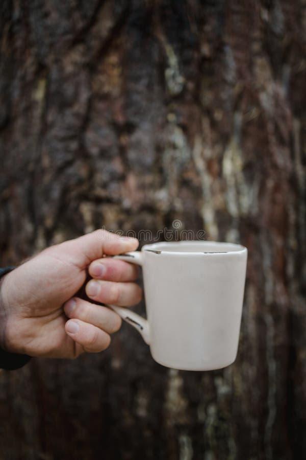 La main tient une tasse de thé avec du café sur le fond d'un vieux coffre en bois Atmosphère d'automne chaleureuse, douceur de l' image stock
