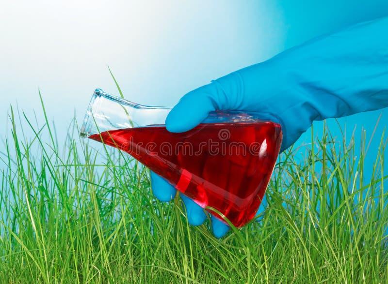 La main verse un flacon avec le liquide sur l'herbe photographie stock libre de droits