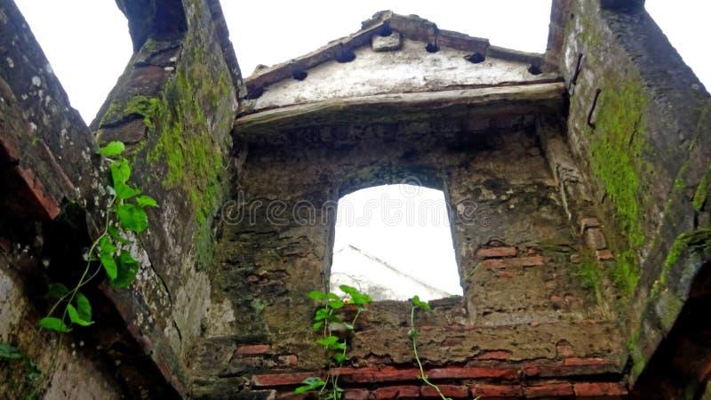 La maison abandonnée est couverte de la mousse verte photo libre de droits