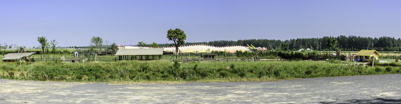 la maison de dragon sur la pelouse image stock