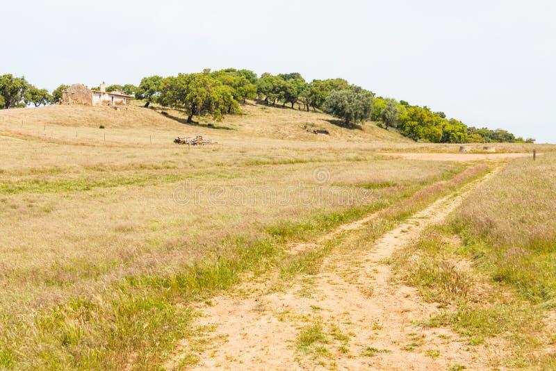 La maison de ferme, les arbres de liège et la route abandonnés à Santiago font Cacem images libres de droits