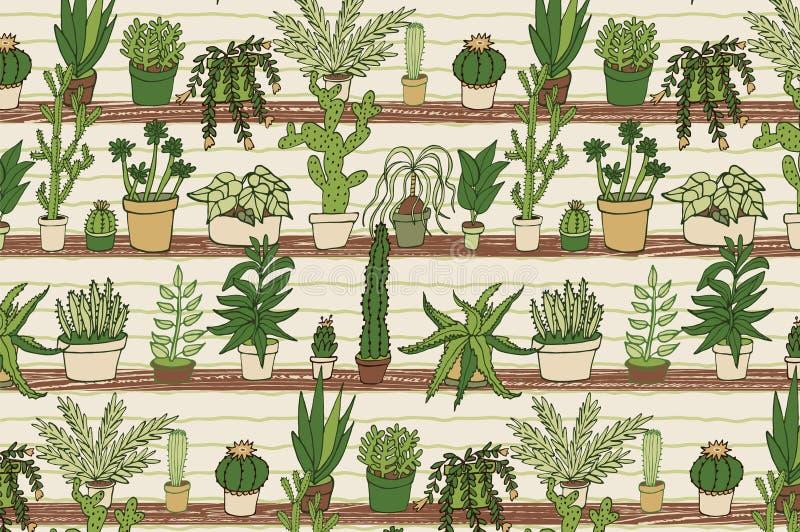 La maison plante le modèle de cactus illustration libre de droits
