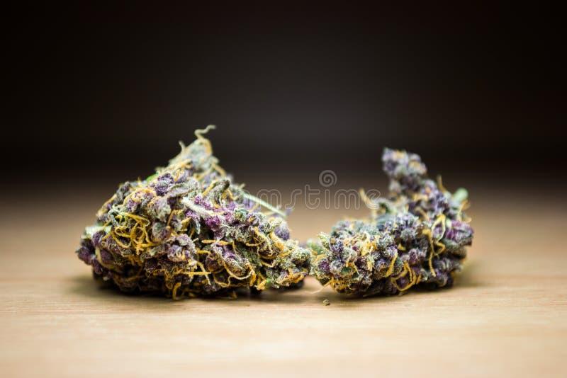 La mala hierba púrpura del oro florece macro en el escritorio de madera fotografía de archivo libre de regalías