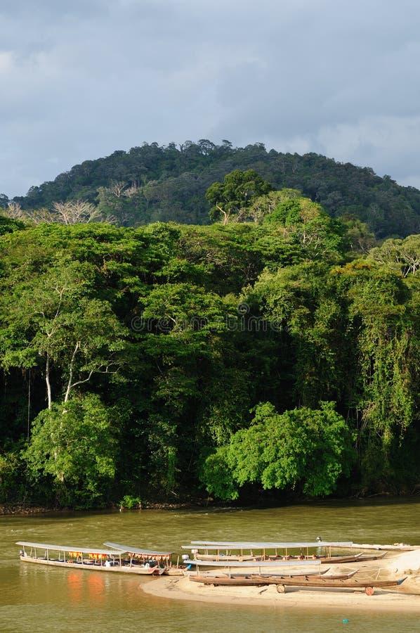 La Malaisie, Taman Negara image libre de droits