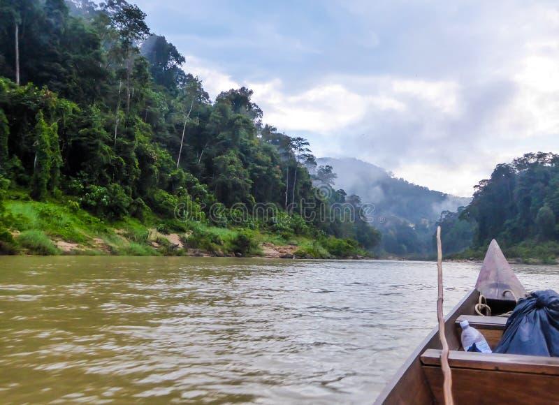 La Malaisie - visite de bateau dans une jungle de mongrove image stock