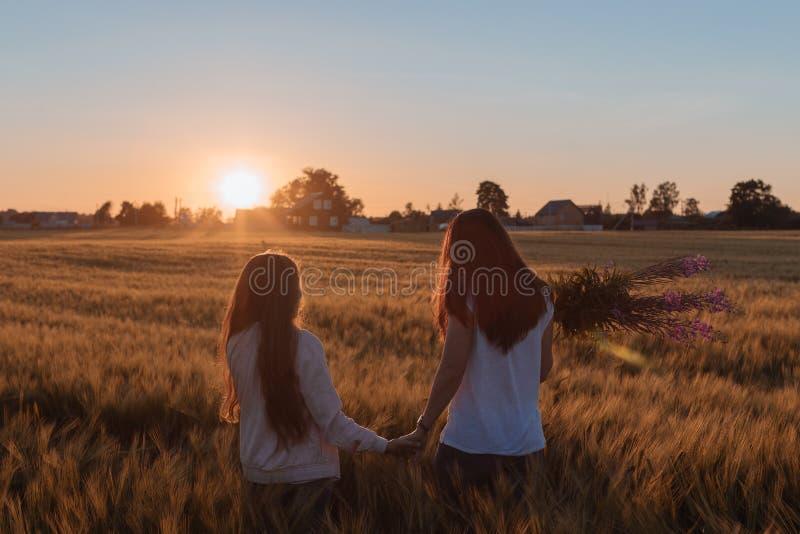 La mamá y la hija llevan a cabo las manos y caminan en el campo amarillo imagen de archivo libre de regalías