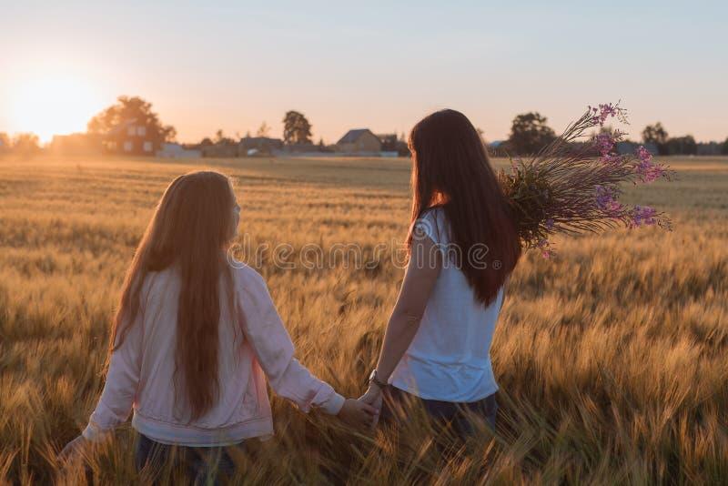 La mamá y la hija llevan a cabo las manos y caminan en el campo amarillo fotos de archivo libres de regalías