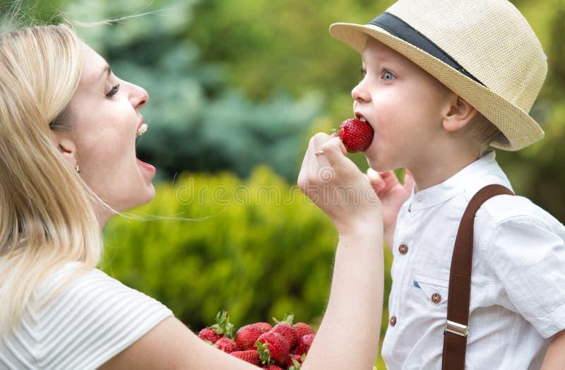 La mam? hace que el hijo come las peque?as fresas fragantes maduras fotos de archivo