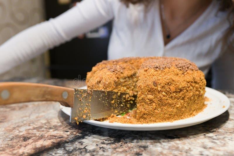 La maman coupe et sert un morceau de gâteau fraîchement cuit au four, qu'ils ont juste fait à la maison La fille a fait un gâteau photographie stock libre de droits