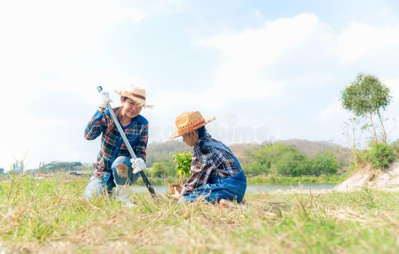 La mamma della famiglia e la ragazza asiatiche del bambino piantano l'albero dell'alberello fotografia stock libera da diritti