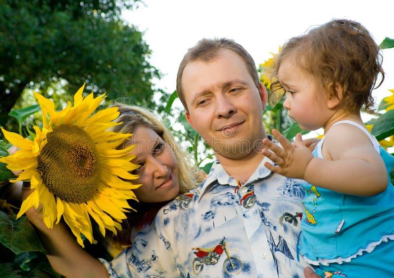 La mamma, il papà ed il bambino in girasole sistemano fotografia stock libera da diritti