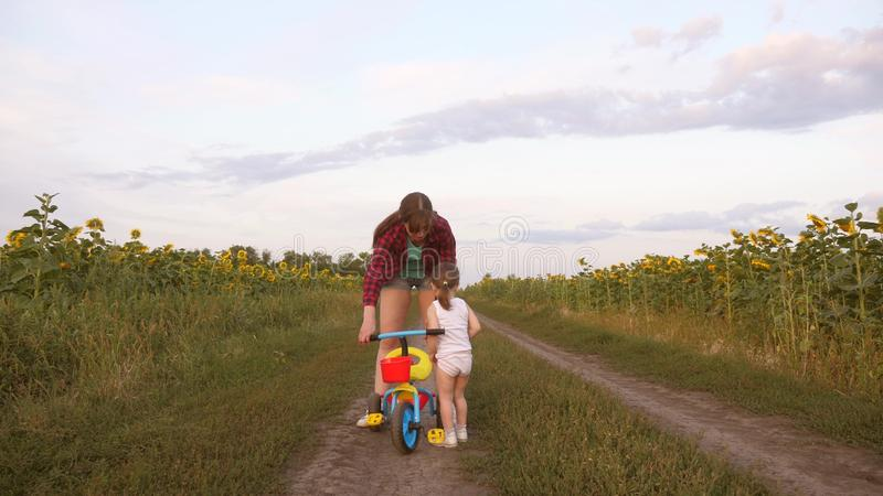 La mamma insegna alla figlia a guidare una bici su una strada campestre in un campo dei girasoli un piccolo bambino impara guidar immagine stock libera da diritti