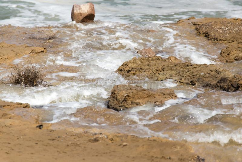 La Manche sur la terre photo libre de droits