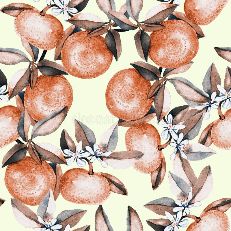 La mandarine s'embranche avec les fruits et les fleurs blanches, palette de couleurs molle de sépia sur le fond jaune mou illustration libre de droits