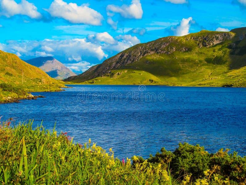 La manera atlántica salvaje, Connemara foto de archivo