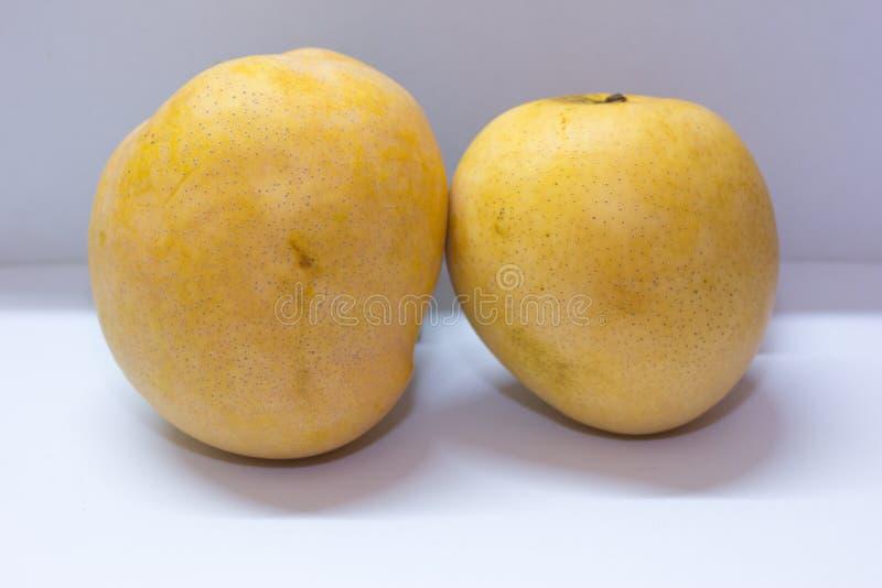 La mangue deux énorme sur le fond blanc avec un bon arome images stock