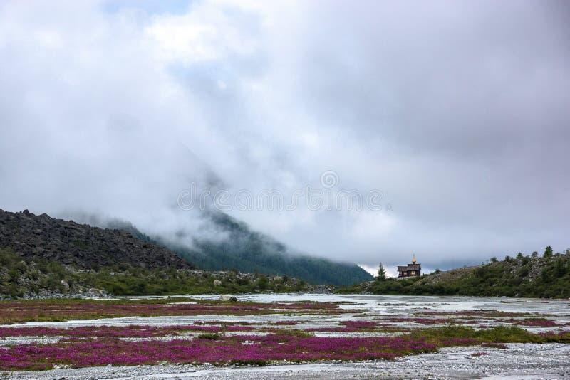 La manière à la montagne de Belukha photo libre de droits
