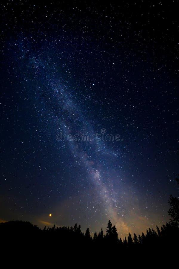 La mani?re laiteuse color?e avec trouble et la silhouette d'arbre dans les alpes autrichiennes en hiver photo libre de droits