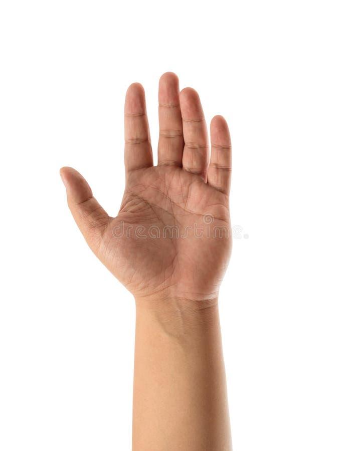 La mano abierta del hombre asiático aislada en el fondo blanco fotos de archivo libres de regalías