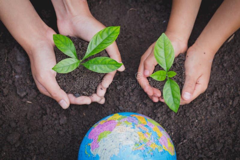 La mano adulta y la mano del niño sostienen un pequeño árbol al lado del globo, planta un árbol, reducen el calentamiento del pla imagen de archivo