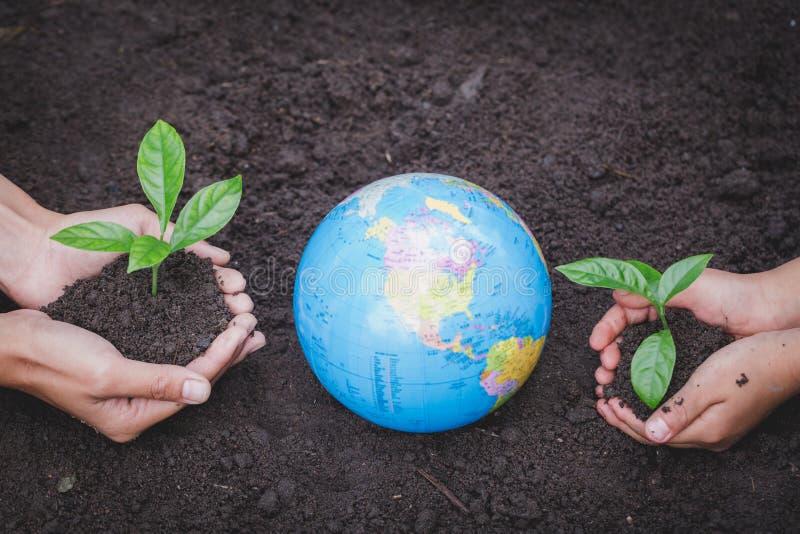 La mano adulta y la mano del niño sostienen un pequeño árbol al lado del globo, planta un árbol, reducen el calentamiento del pla fotos de archivo