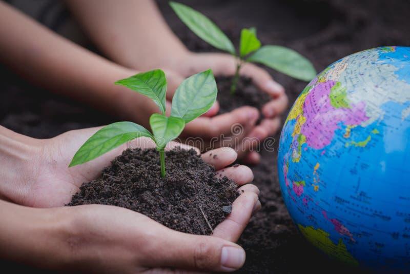 La mano adulta y la mano del niño sostienen un pequeño árbol al lado del globo, planta un árbol, reducen el calentamiento del pla fotografía de archivo libre de regalías