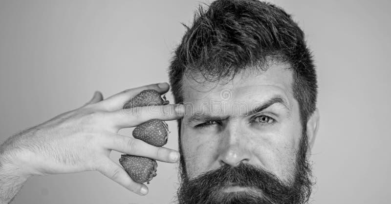 La mano barbuda del control del inconformista del hombre con las fresas acerca a la cara El hombre no puede pensar en todo menos  fotografía de archivo libre de regalías