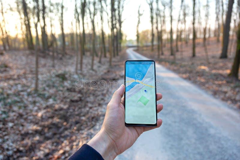 La mano che giudica una mostra del telefono cellulare gps traccia in un fondo della foresta fotografia stock libera da diritti