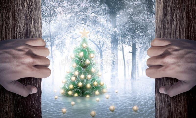 La mano del hombre abre la puerta que mira el árbol de navidad fotos de archivo libres de regalías