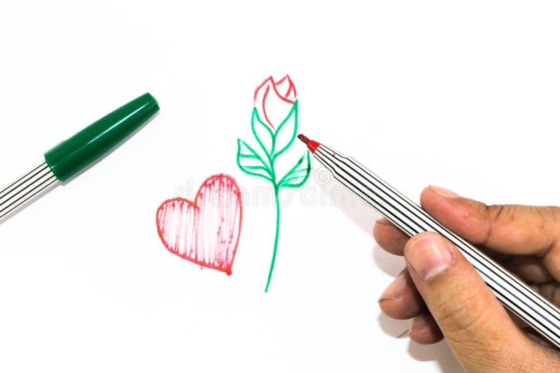 La mano del hombre está dibujando la muestra roja del corazón y la manija del verde subió encendido fotos de archivo libres de regalías